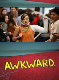 Awkward Season 1 DVD Box Set