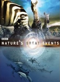 BBC The Earth Series DVD Box Set