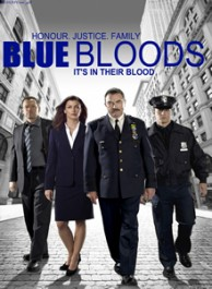 Blue Bloods Season 1 DVD Box Set