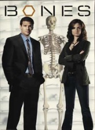 Bones Seasons 1-6 DVD Box Set