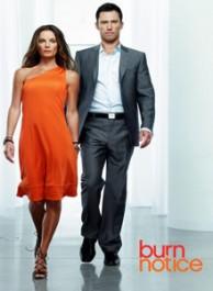 Burn Notice Seasons 1-5 DVD Box Set