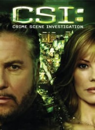 CSI: Lasvegas Seasons 1-12 DVD Box Set