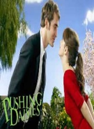 Pushing Daisies Seasons 1-2 DVD Box Set