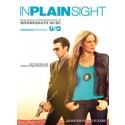 In Plain Sight Seasons 1-4 DVD Box Set