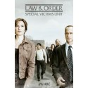 Law & Order Special Victims Unit Season 13 DVD Box Set
