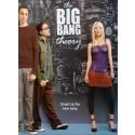 The Big Bang Theory Season 4 DVD Box Set