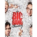 The Big Bang Theory Seasons 1-5 DVD Box Set