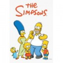 The Simpsons Seasons 1-25 DVD Box Set